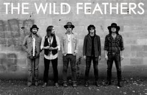 wildfeathers
