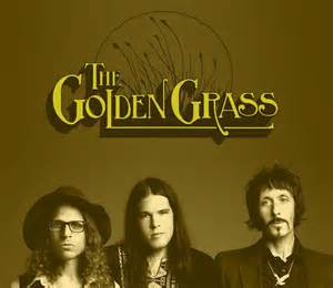 thegoldenggrass